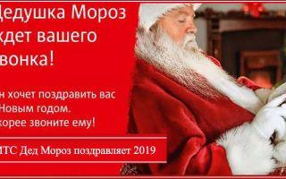 МТС звонок Деду Морозу – бесплатный номер телефона